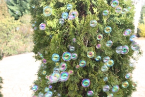 Bubble Christmas lights