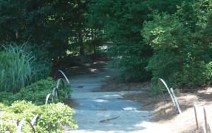 Follow the shady path around the pond.